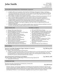 professional network it analyst resume sample jpg business analyst resume objective
