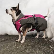 <b>Winter Dog Coats</b>