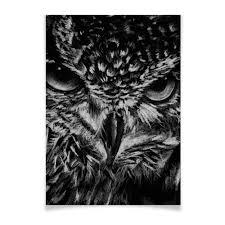 "Плакат A3(29.7x42) ""Черно-белая <b>сова</b>"" #2818600 от VarvarArt ..."