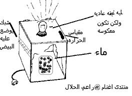 بيع ادوات فقاسة البيض في الجزائر  Images?q=tbn:ANd9GcRe3QRZypIT-wY246XICsnmzhdHxTgH-vZEehhPEhooPInJD-Pa