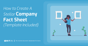 How to Create a <b>Fact Sheet</b> ( Template Included )