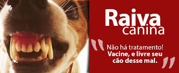 Resultado de imagem para IMAGENS DA RAIVA DO HOMEM