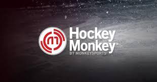 Best Hockey <b>Sticks</b> for 2019 – Top Ice Hockey <b>Stick</b> Reviews