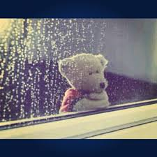 Image result for teddy bear longing images