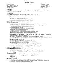 resume preparation online   resume samples  resume preparation sample