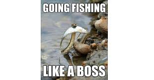 20 Fishing Memes That'll Have You Cracking Up - Wide Open Spaces via Relatably.com
