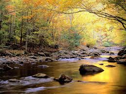 siddhartha essay on the river pdfeports867 web fc2 com siddhartha essay my english portfolio
