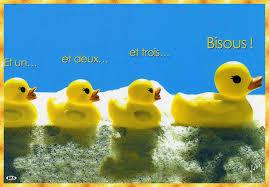 """Résultat de recherche d'images pour """"gif anniversaire petit canard"""""""