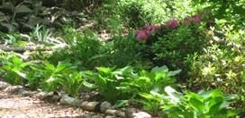 Small Picture Shade Garden Design Garden Design