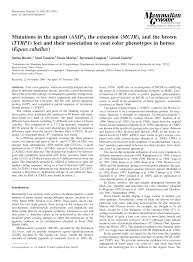 (PDF) Mutations in the agouti (ASIP), the extension (MCIR), and the ...