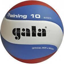 <b>Gala TRAINING</b> 10 <b>Мяч волейбольный</b> (цвет Белый, Сине ...