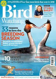 Birdwatchinguk february2018 by Di Originale Di Arte - issuu