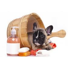 Косметика для собак купить | цена в интернет-магазине ...