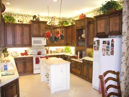Resurfacing Kitchen Cabinets Kitchen Trendy Refacing Kitchen Cabinets Within Reface Kitchen