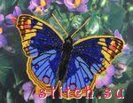 <b>Наборы для вышивания Butterfly</b>