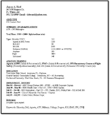 how do resumes look like template template do a resume