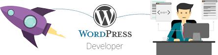 Hire WordPress Developer, Hire Dedicated WordPress Developer