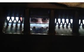 personal essay behind bars in egypt  al jazeera america thumbnail image for videos from egypt prisons paint bleak picture