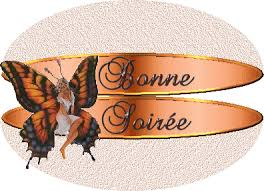 Image result for bonne soiree week end