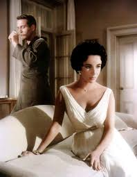 cat on a hot tin roof essay film analysis of cat on a hot tin roof at com