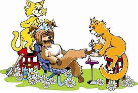 два кота стригут собаку смешная картинка