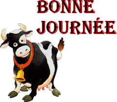 """Résultat de recherche d'images pour """"gif une jolie vache"""""""