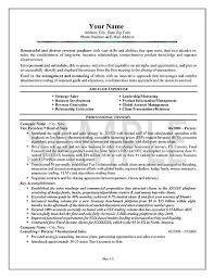 resume-example-exex23a.jpg Executive Sales Resume Example
