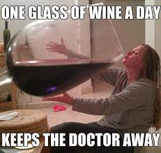 15 Funniest Things People Say About Wine Drinking - Wine Bags.com via Relatably.com