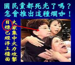 「洪秀柱 台灣人對不起國民黨」的圖片搜尋結果