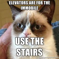 ELEVATORS ARE FOR THE IMMOBILE USE THE STAIRS - Grumpy Cat | Meme ... via Relatably.com