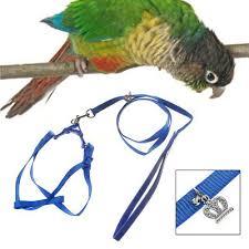 <b>Adjustable Parrot Leash Pet</b> Harness Outdoor Anti Bite Training ...