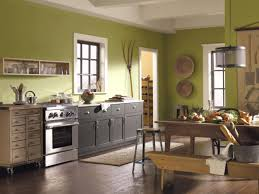 Kitchens Colors Green Kitchen Paint Colors Pictures Ideas From Hgtv Hgtv