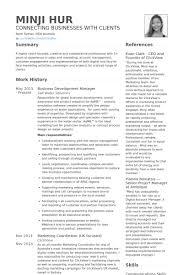 business development resume samples   visualcv resume samples databasebusiness development manager resume samples