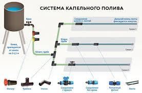 <b>Устройство Капельного Полива</b> в Теплице (Фото & Видео)+Отзывы