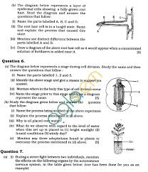 biology essay questions grade essay questions formation department home math worksheet science question paper for class icse class math