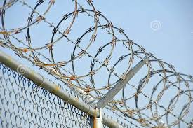 Image result for concertina wire