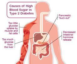 essay on type  diabetes