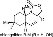New Oblongolides Isolated from the Endophytic Fungus Phomopsis ...