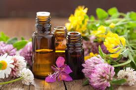 Hasil gambar untuk Alternative Therapies in Science: Essential Oils Anti-Cancer Effects