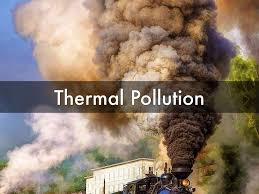 what are the causes and effects of thermal pollution on our what are the causes and effects of thermal pollution on our environment