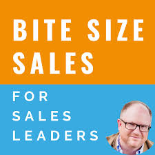 Bite Size Sales for sales leaders