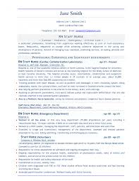 it resume service technical skills resumes for it professionals federal resume samples