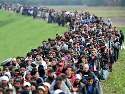 Image result for vett refugees