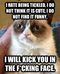 I hate being tickled, I do not think it is cute, I do not find it ... via Relatably.com