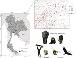 Defaunation of large-bodied frugivores reduces carbon storage in a ...