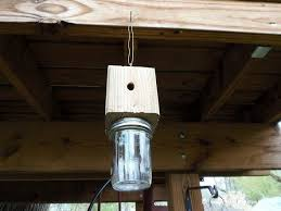 How to Build a Carpenter <b>Bee Trap</b>