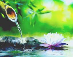 The Best <b>Solar Fountain</b> Pump and <b>Solar</b> Pond Pump Reviews ...