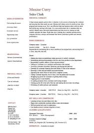 Sales Clerk resume Dayjob