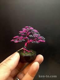 Kuvahaun tulos haulle bonsai tree