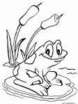 Распечатать раскраску лягушка